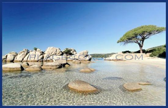 La plus belle plage de Corse Folaca
