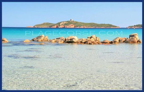 Pinarello en Corse