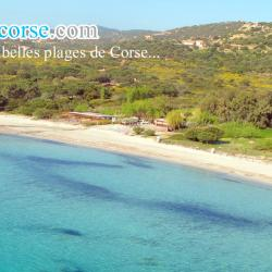 Plage Palombaggia